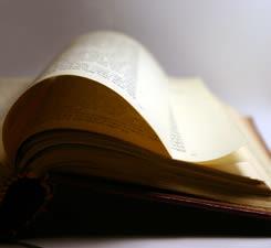 Lag b'Omer: The Torah Will not be Forgotten
