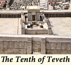 The Tenth of Teveth - Laws and Customs