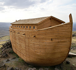 Parachat Noa'h 5575