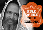 Miketz: Rule of the True Tzaddik