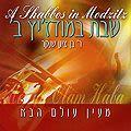 Bentzion Shenker - Un Chabath à Medzitz vol. 2