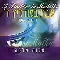 Bentzion Shenker - Un Chabath à Medzitz vol. 4