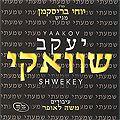 Yaakov Shwekey - Debutalbum