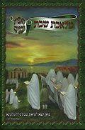 מלאכת שבת - לאבות ובנים (ילקוט יוסף)