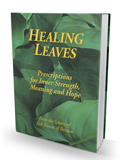 Healing Leaves - Letters of Reb Nosson