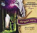 High Holidays Prayer, Yisrael Williger