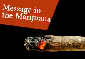 Message in the Marijuana