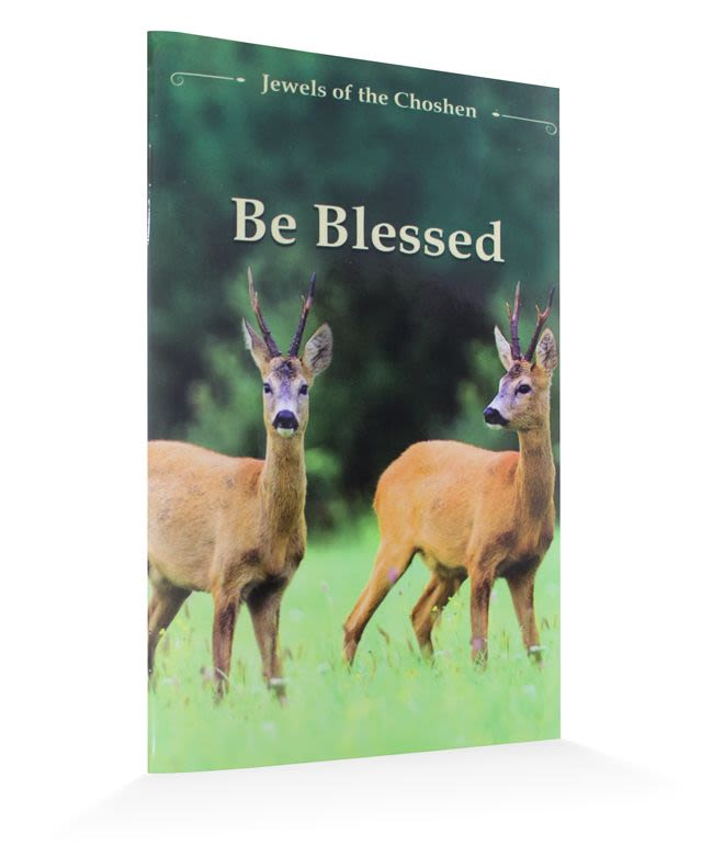 "Be blessed - The ""Jewels of the Choshen"" series"