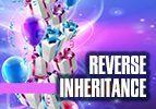 Reverse Inheritance