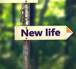 Discover Your New Life Now