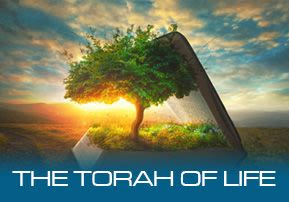 The Torah of Life
