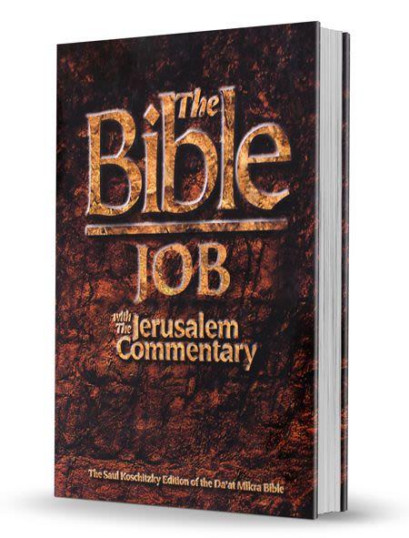 The Bible - Job