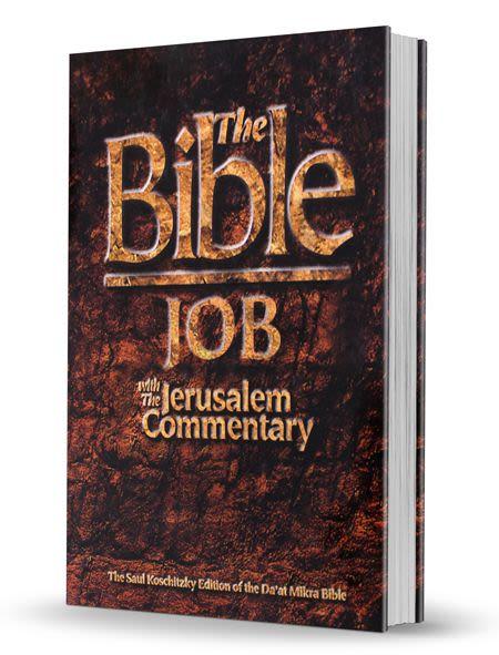 The Bible - Job