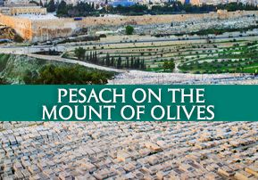 Pesach on the Mount of Olives