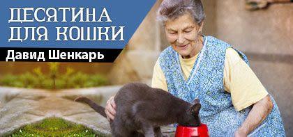 Десятина для кошки