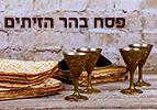 פסח בהר הזיתים