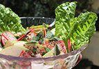 סלט זעתר טרי - צמח מרפא בסלט טעים ומפתיע