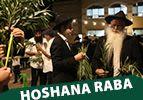 Hoshana Raba