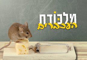 מלכודת העכברים