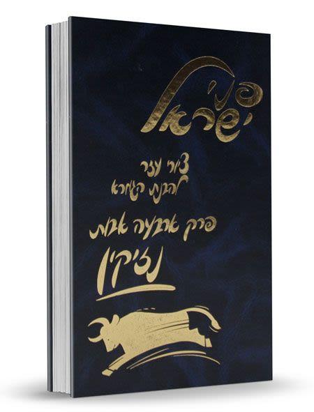 "Gemorrah ""Pnei Yisrael"" - Nizikin"