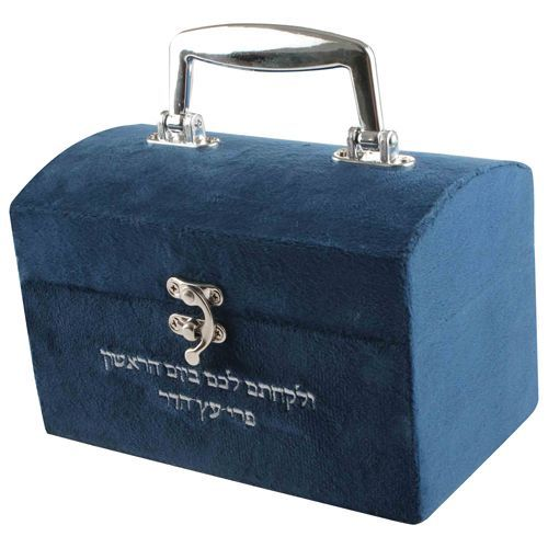 Etrog Box - Embroidered Blue Velvet