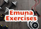 Emuna Exercise
