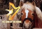 Perek Shira - The Horse
