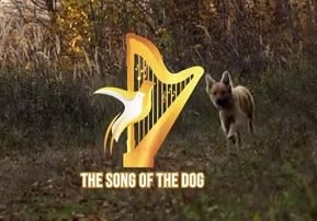 Perek Shira - The Song of the Dog