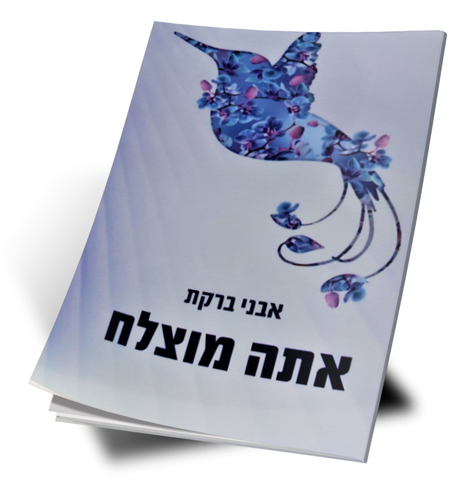 EMERALDS Series - You are Successful (Hebrew)