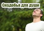 Снадобья для души (7)