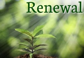 Ki Tavo: Renewal