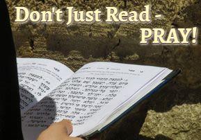 Don't Just Read – PRAY - A New Light