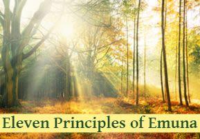Eleven Principles of Emuna - A New Light