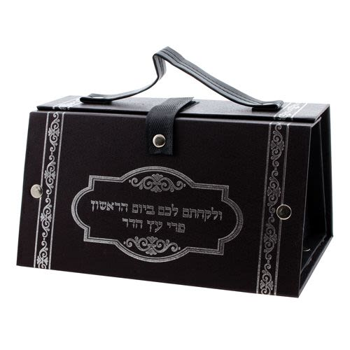 Etrog Case in Silver-Colored Imitation Leather