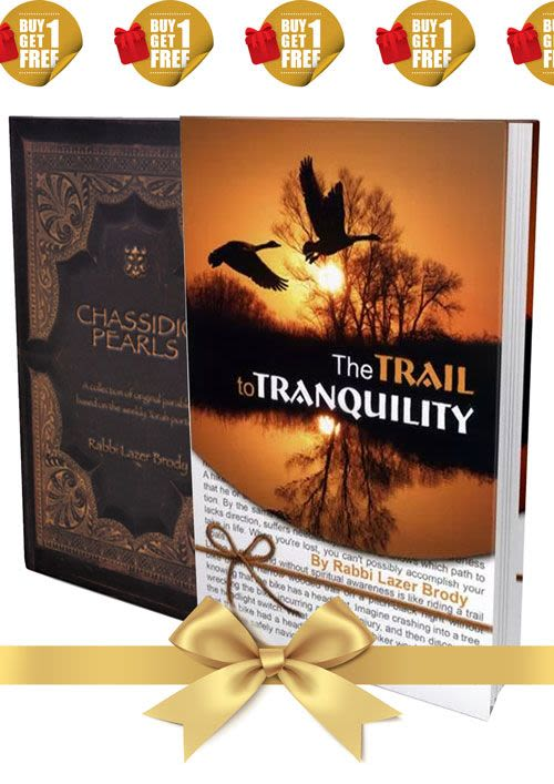 A special set of Rabbi Brody's books