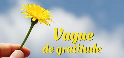 Vague de gratitude
