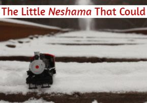 The Little Neshama That Could